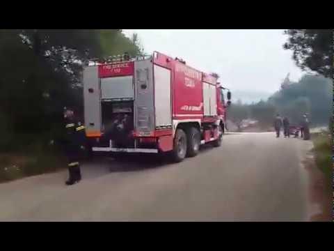 Video - Πυρκαγιά σε δάσος στη Ζάκυνθο