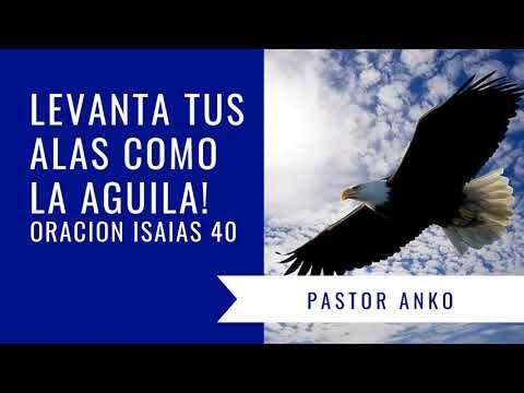 Versos de amor - Pastor Anko Jehova te dara nuevas fuerzas, levanta tus alas como la aquila - Oraciones pentecostales