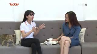 Kỳ 3: Giao lưu cùng Kiều Ngân về những chú mèo - Thú Cưng TV