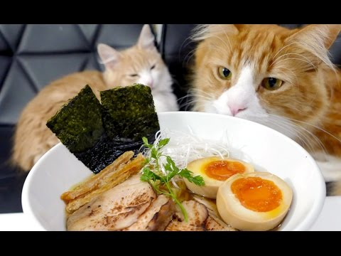 Japanese Chef Makes Homemade Ramen With His Cats