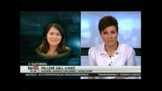 Pelczné dr. Gáll Ildikó a HírTV-ben