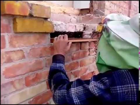 когда и как ловят пчел видео