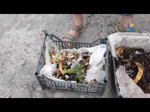 ZeroWaste: Захищаємо природу від сміття [ВІДЕО]