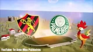 Cavalinho do Palmeiras no Fantástico 23 07 20171