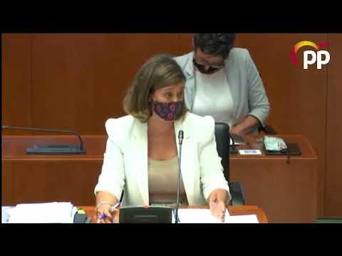 El PP denuncia la escasa recuperación de los servicios sociales en Aragón tras un año de pandemia