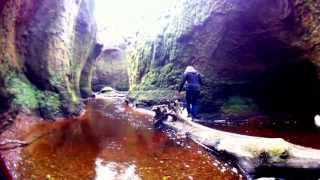 Download Lagu The Devil's Pulpit (Finnich Glen) Mp3