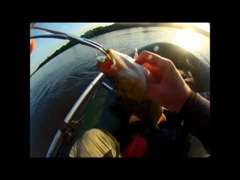 спиннинг для рыбалки на вятке