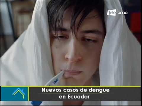 Nuevos casos de dengue en Ecuador