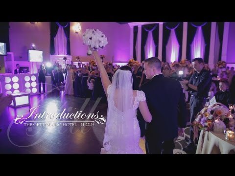 Wedding Party Introductions - The Gill Wedding