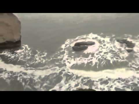 Real mermaid caught sleeping on a rock 2013