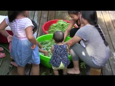 Party For Baby Ntxhee Sua Yang July,30, 2016 (видео)