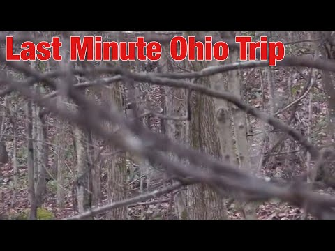 LAST MINUTE TRIP BACK TO OHIO-I MIGHT BE CRAZY!!