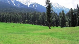 Beautiful Sikkim Travel Video