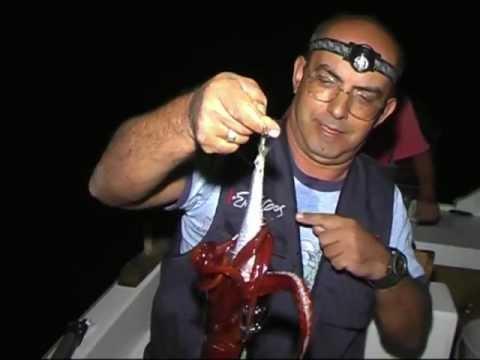 Flying squid fishing - Ψάρεμα θραψάλων