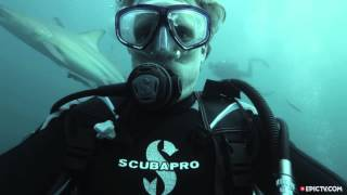 Il prend un selfie au milieu des requins