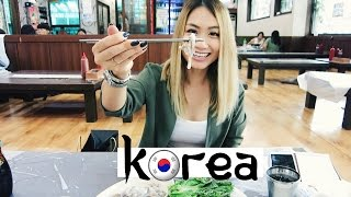 Seoul South Korea  city photos gallery : Travel Vlog: Seoul, South Korea | HAUSOFCOLOR