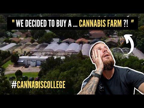 Growing Marijuana (Episode 1)