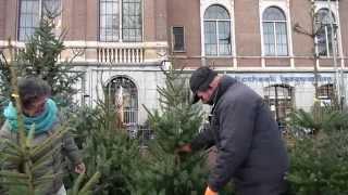 Kerstboomverkoop draait weer op volle toeren