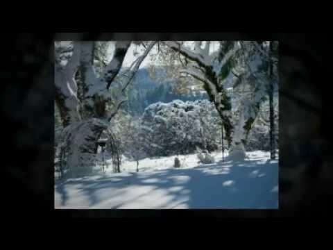 Tekst piosenki Diana Ross - White Christmas po polsku