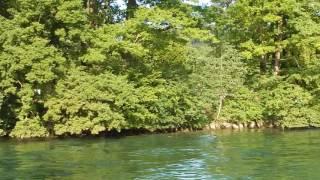 スイス発 激混み!ルツェルンの夏は湖水浴【スイス情報.com】