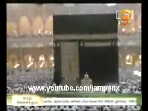 AJAIB ! - KUCING MENYENTUH KA'BAH