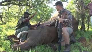 Outfitters Rating TV - S02/E09 - Smith & Dunham Safaris - Elephant