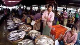 Dawei Myanmar  city pictures gallery : เที่ยวตลาดสด ที่เมืองทวาย, Dawei fish market,Myanmar