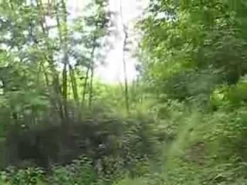 Selo Brnjeuška - od nekadašnje lepotice ne osta skoro ništa.