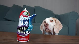 Dogs vs Annoying Whipped Cream Prank! Funny Dogs Maymo & Potpie by Maymo