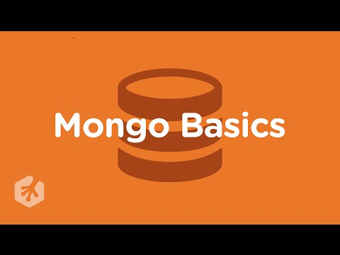 Learn Mongo Basics with Treehouse