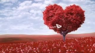 فيديو حب وغرام - فيديو حب ورومانسية - فيديو حب رومنسي