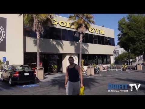 Entrenamiento en Gold's Gym - Venice, California