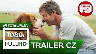 Video Psí poslání (2017) CZ HD dabing trailer MP3, 3GP, MP4, WEBM, AVI, FLV Agustus 2018
