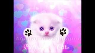 Kitty Cat Live Wallpaper YouTube video