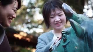 日本茶都?富士山下的島田市漫游紀