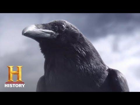 Vikings Season 5 Teaser 'Crow'