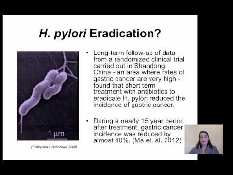 how to test for eradication of h pylori