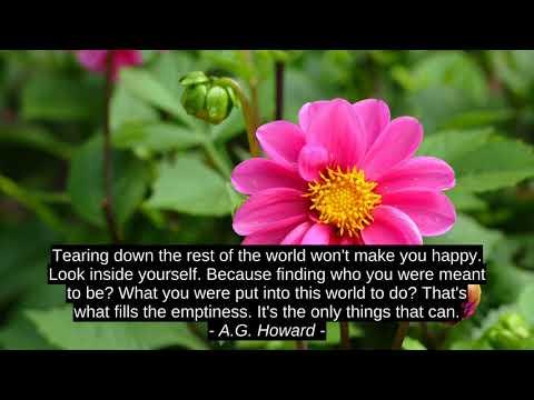 Success quotes - Best 10 Motivation Quotes - Gabbriella Conte