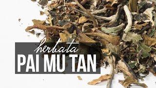 Herbata biała Pai Mu Tan. Klasyczna biała herbata. Czajnikowy.pl Chcesz więcej? Portal i sklep z herbatą http://czajnikowy.pl Kup białą herbatę Pai Mu Tan: h...