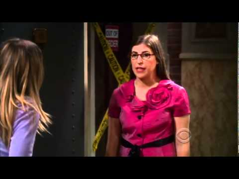 The Big Bang Theory 5.03 Preview