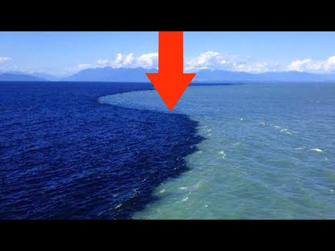 Why don't the Atlantic and Pacific oceans mix | Gulf of Alaska where two oceans meet but do not mix