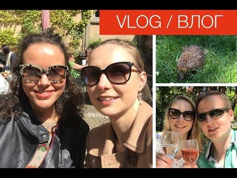 Vlog/ВЛОГ: Пикники, день мамы, встреча с bloggerrussa, Франкфурт, ёжик