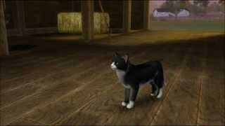 Sims 3 Pets Cat Breeds