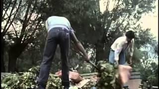 Documental: La Isla De Las Flores (Español)