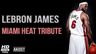 Lebron James 2010 - 2014 | Miami Heat Tribute ᴴᴰ