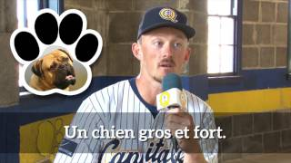 L'Avant-match | Race de chien