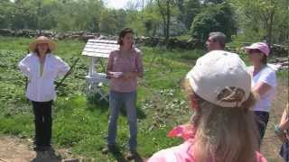 Organic Farming&Gardening At The Hickories - Part 3: Soil Bacteria And Fungi
