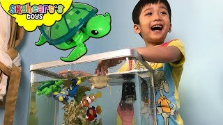 We have a real aquarium in the house, complete with corals - and Skyheart is playing with his fish toys for kids. We have the robo alive sea creature tank, clown fish, blue and green turtle, finding dory and nemo, angler fish, crocodile, seahorse, rubber duckie, little live pets turtle. They are all swimming inside the aquarium, and Skyheart is going to catch them all with his fish net.[CLICK HERE] Subscribe to our channel for more fun and toyshttp://youtube.com/c/SkyheartsToysChannel?sub_confirmation=1