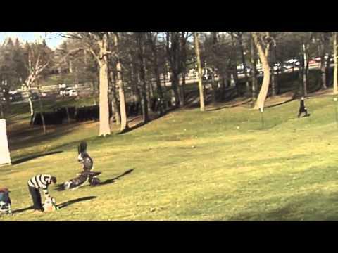0 Воля случая. В Канаде орел схватил и поднял в воздух ребенка. Видео