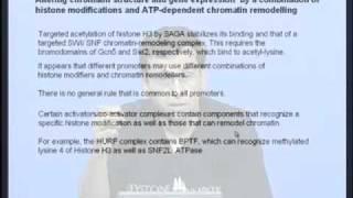 Mod-03 Lec-10 Chromatin Remodelling&gene Regulation